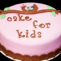 Cake 4 Kids Contest {2013}