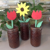 Mother's Day Chocolate Flower Pots